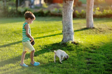 on a lawn play the child with a puppy of a pug Stock Photo - 14689591