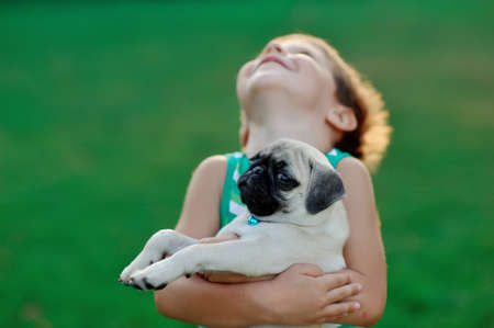 on a lawn play the child with a puppy of a pug Stock Photo - 14689575