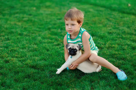on a lawn play the child with a puppy of a pug Stock Photo - 14689592