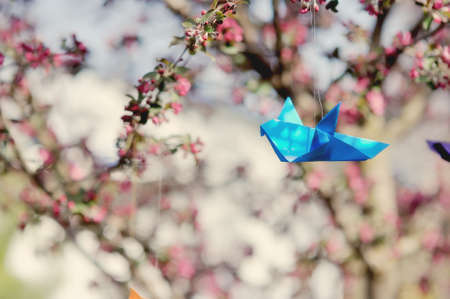 in the spring on branches of a blossoming tree paper cranes hang