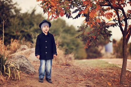 the boy in the autumn wood in a hat and a coat among trees Stock Photo - 14795284