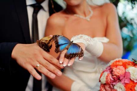 donna farfalla: nelle mani della sposa e dello sposo sedere grande, bellissimo mazzo di fiori e farfalle