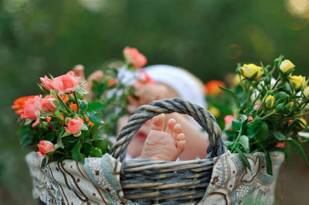 in a basket with a bouquet of roses is a child and a close-up foot photo