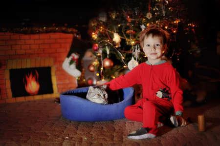 Boy and a Christmas tree Stock Photo