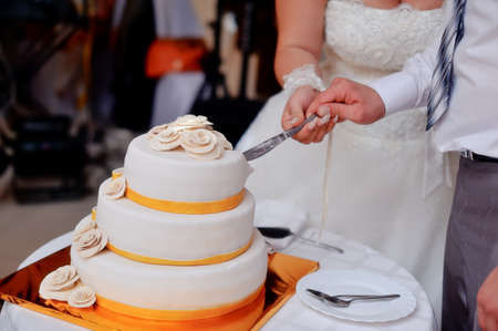 simple meal: wedding cake and bride and groom with the knife