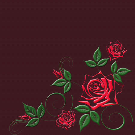 illustration on the burgundy red background beautiful rose illustration