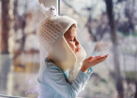 winter boy sitting by the window in a white knitted cap Stock Photo - 16715866