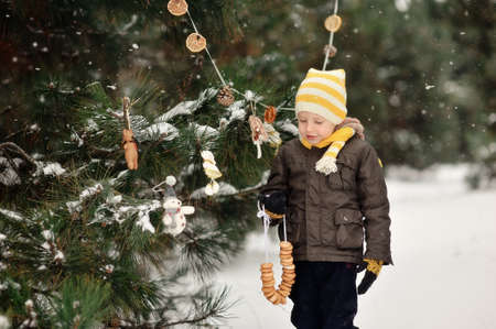 in the forest boy decorates a Christmas tree toys Stock Photo - 16962566
