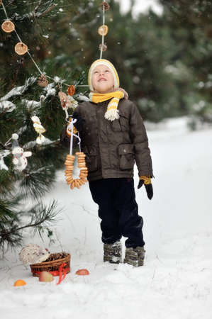 in the forest boy decorates a Christmas tree toys photo