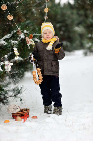 in the forest boy decorates a Christmas tree toys Stock Photo - 16962496