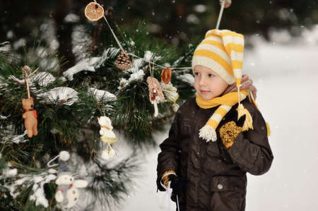 in the forest boy decorates a Christmas tree toys Stock Photo - 16962565