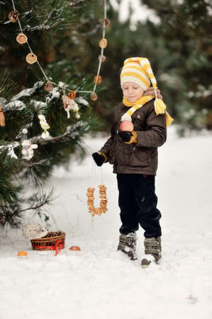 snowy winter outdoors boy dresses up Christmas tree bagels and toys Stock Photo - 16972270