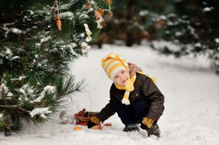 snowy winter outdoors boy dresses up Christmas tree bagels and toys Stock Photo - 16972271
