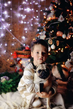 The boy in a night suit under an elegant fur-tree with a pug Stock fotó