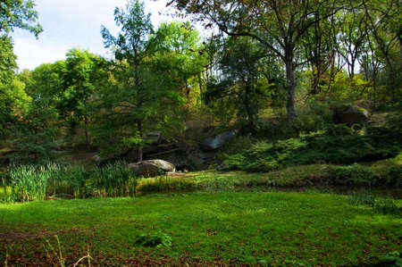 Landscape-among of green trees a glade with the big stones Stock Photo - 17379347