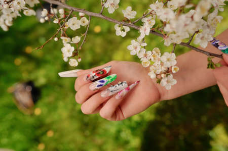 against the background of flowering branches of women s hands with a nice manicure different picture photo