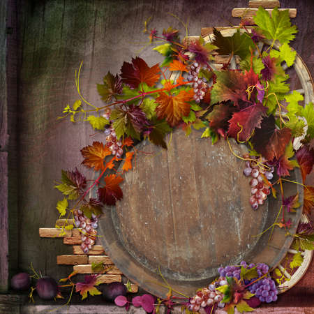 autumn composition photo