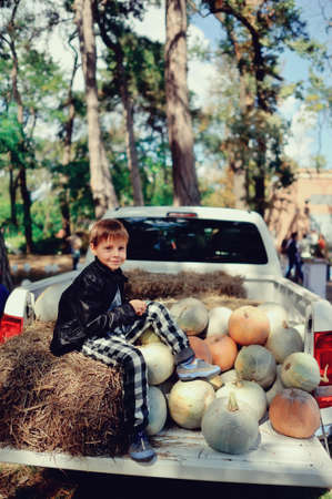laden: a car laden with hay and pumpkins sitting funny boy
