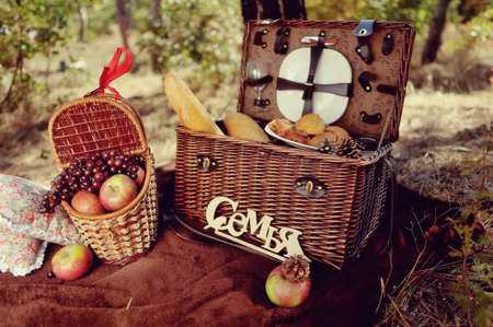 autumn still life in the woods picnic basket with fruit and bread