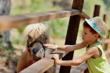 at the zoo behind a wooden fence stands with white mane pony boy and stroking her hat photo