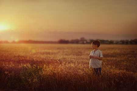 on the wheat field at sunset is a small boy photo