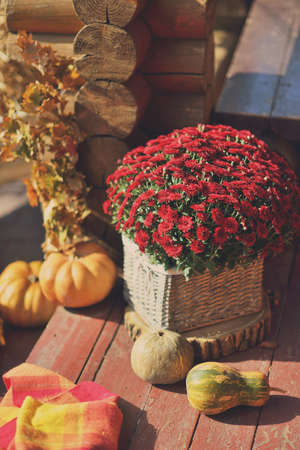 large pumpkin: the house on a wooden table and a large pumpkin decorative vase with a bouquet of chrysanthemums Stock Photo