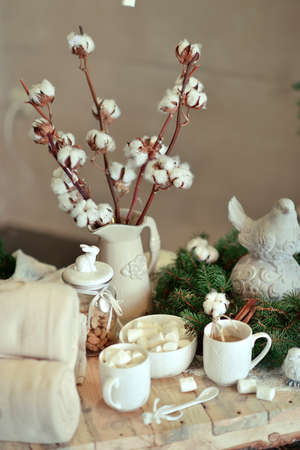 bolls: web and cotton bolls in a vase with green tree branches and cup of cocoa