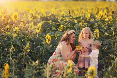 on the field with yellow sunflowers mother with her children photo