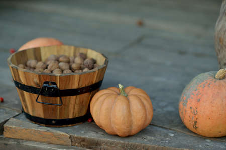 large pumpkin: large pumpkin and a wooden basket with walnuts