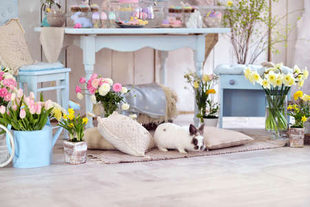 Easter decorations in the room in pastel colors, flowers, eggs, rabbits