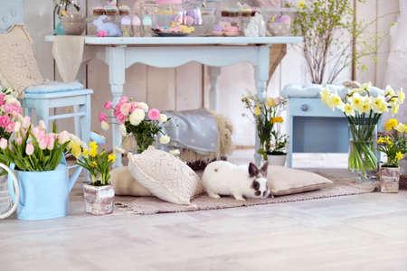 Pasen decoraties in de kamer in pastel kleuren, bloemen, eieren, konijnen Stockfoto
