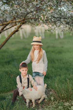 zoo youth: little girl in a hat with a boy playing with a little white goat in lush garden