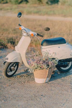 fiori di campo: sotto gli alberi sul campo è un ciclomotore bianco sul campo e un cesto di fiori selvatici Archivio Fotografico