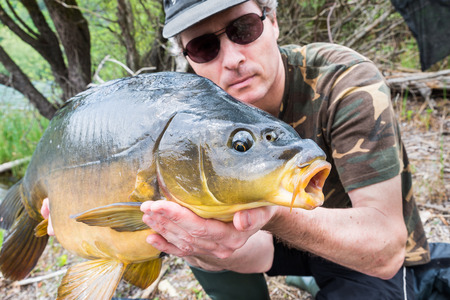 Fishing adventures, carp fishing. Mirror carp (Cyprinus carpio), freshwater fish.  Angler with a big carp fishing trophy Archivio Fotografico