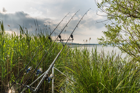 Fishing adventures, carp fishing. Sport and technology. Modern and technological equipment for sport fishing