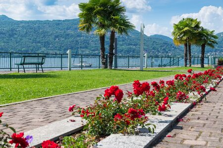 Lake promenade with red flowers. Ranco lakefront on Lake Maggiore, Italy. Tourist town on the Lombard side of the lake