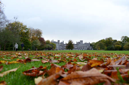 Kilkenny Castle view from the Garden with Leafs on the Grass, Ireland