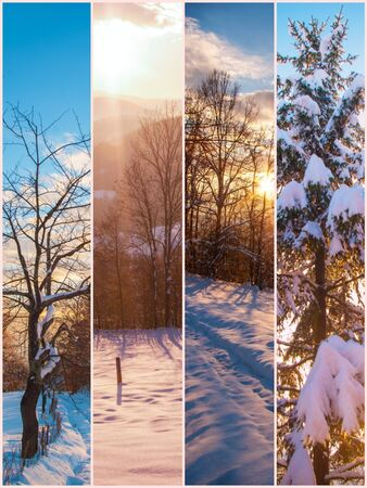 many various amazing nature landscape at winter season