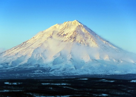 Volcano against winter wood on kamchatka Stock Photo