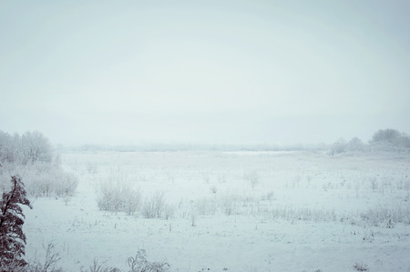 Winter fog in rural areas in Russia photo