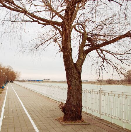 promenade: promenade along the river