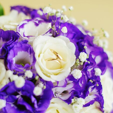 Set of wedding rings on flowers photo