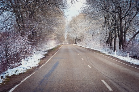 Beautiful winter landscape with the winter road