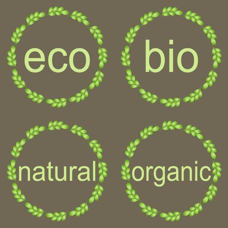 productos naturales: Hoja marcos, etiquetas y pegatinas. Marcos redondos con las hojas verdes Foto de archivo