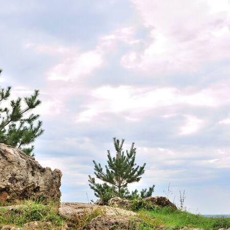 Zonnige dag in de bergen landschap met rotsen