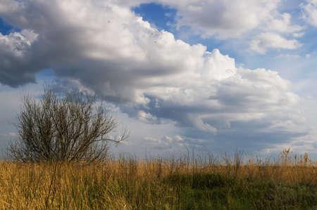 metaphysical: Metaphysical landscape Stock Photo
