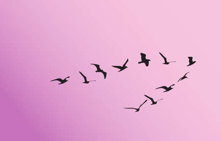 follow the leader: animal background Illustration