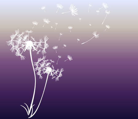 overblown: abstract card with dandelions vector background