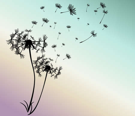 flower head: abstract card with dandelions vector background