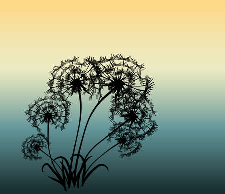 abstract card with dandelions vector background